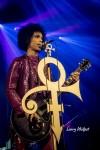 Prince (Rare)